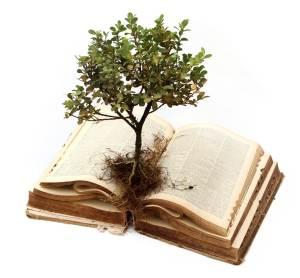 tree+book