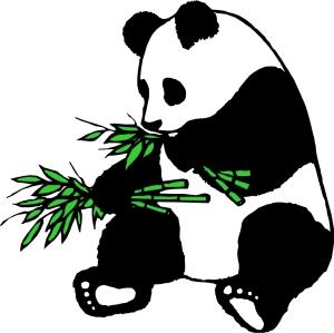 giant-panda-clip-art-dTr4bjGT9