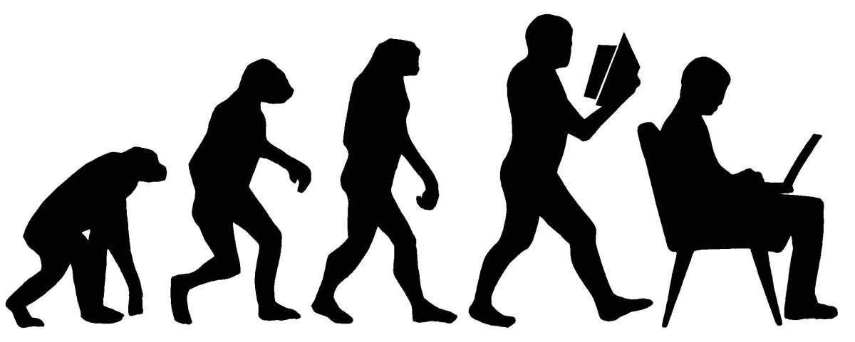Evolution: 2014 - 2018