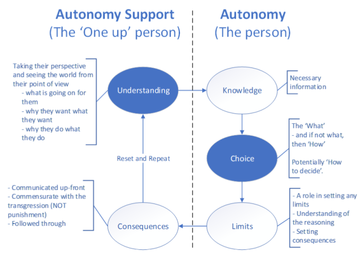 Autonomy Support from Paint